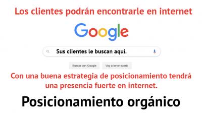 PosicionemientoOrganico_1